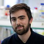 Dr. Adrien BRULEFERT<BR><BR>Prix de la Région Grand Est<BR><BR>CNRS UPR 3572 - Institut de Biologie Moléculaire et Cellulaire (IBMC)